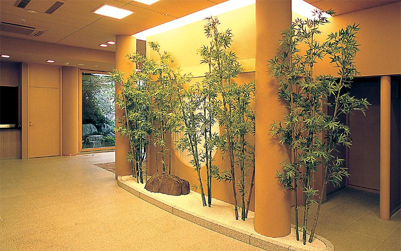 竹の画像 p1_14